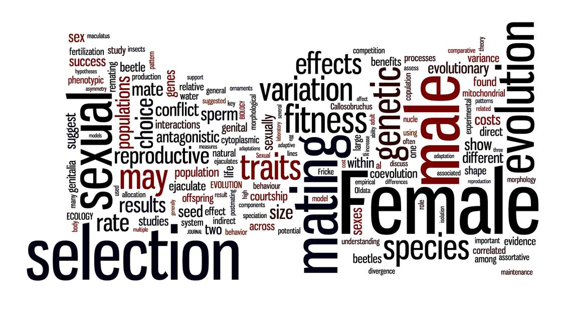 Sexually antagonistic coevolution hypothesis